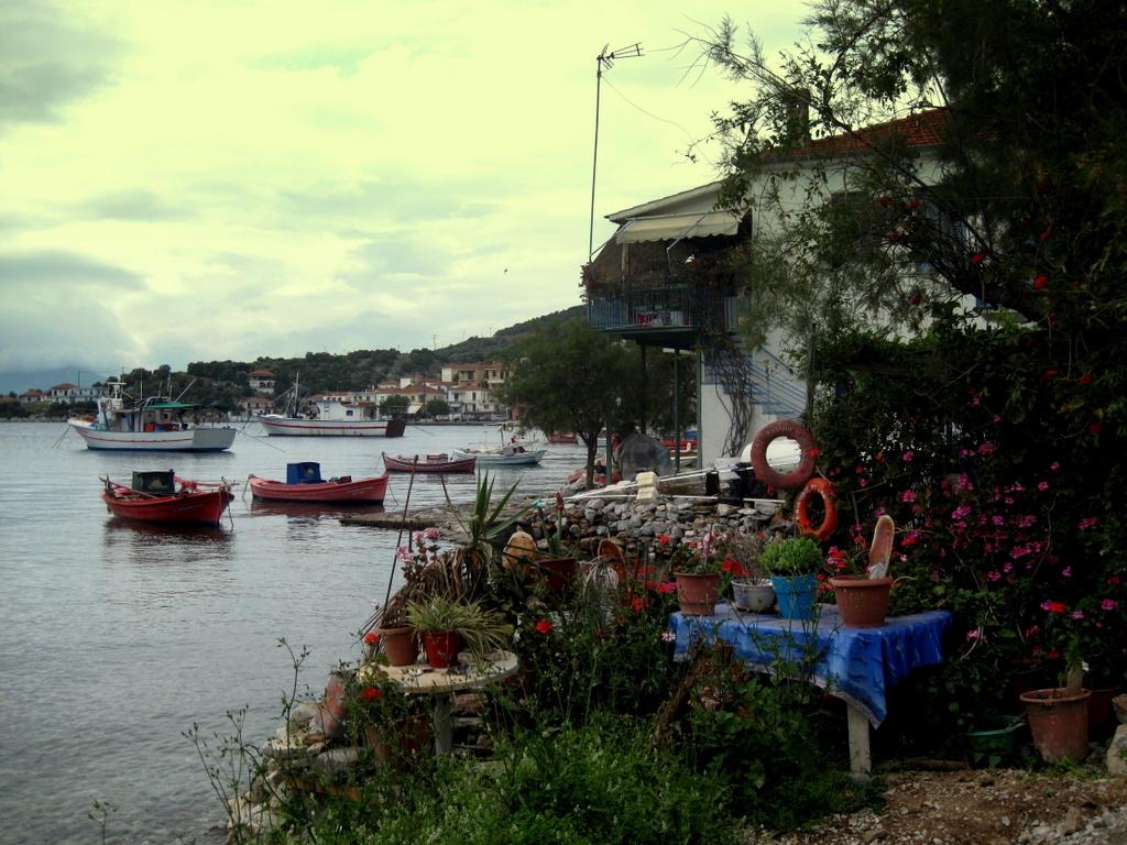1-102 Agios Kiriaki
