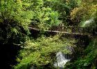 1-046 Naoussa Arapitsa river