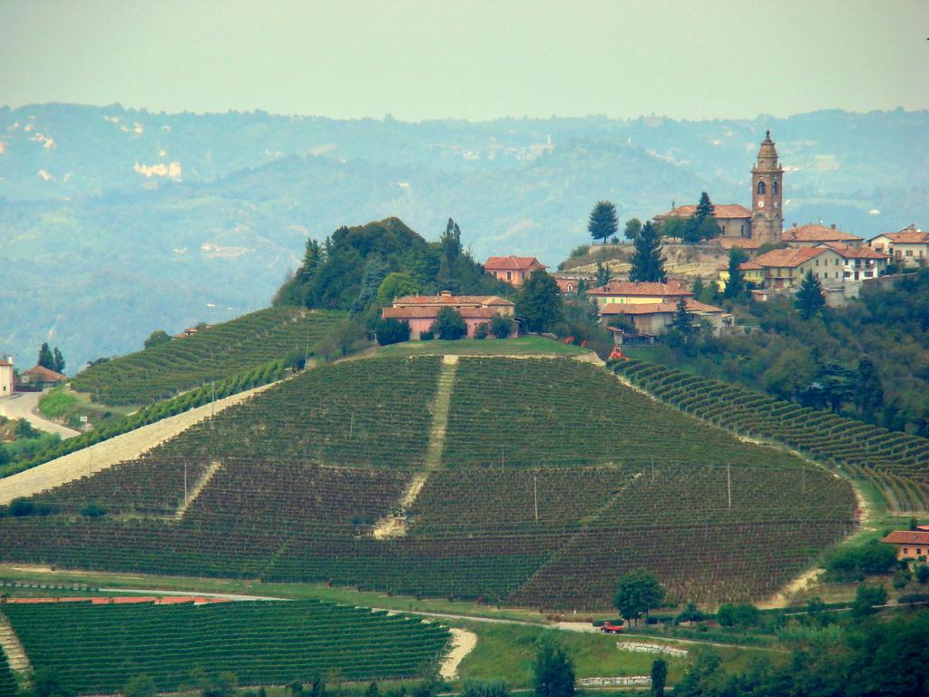 1-087 Piemonte rurale.JPG